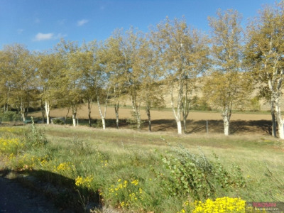 Vente terrain Villefranche de Lauragais 10 Kms