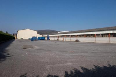 Vente Local d'activités / Entrepôt Yenne