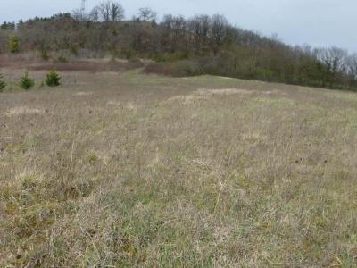 Site  Monsegur