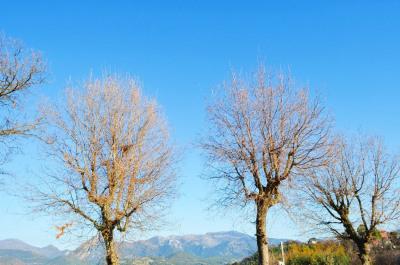 Terrain Berre Les Alpes 1527 m²