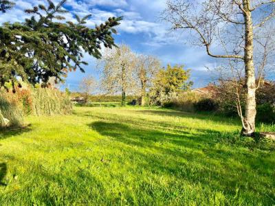 Terrain Proche Saint Paul Les Dax 1031 m²