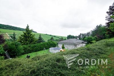 Pavillon chablis - 5 pièce (s) - 160 m²