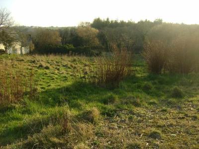 Vente terrain Plounerin