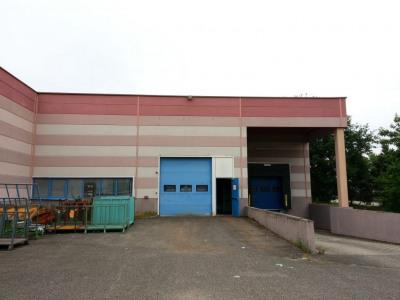 Location Local d'activités / Entrepôt Blyes
