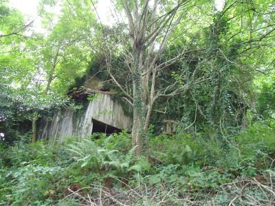 Terrain avec ruine Chein Dessus