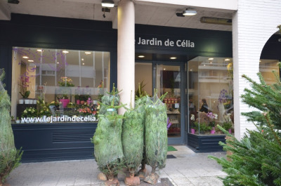 Vente local commercial Poissy