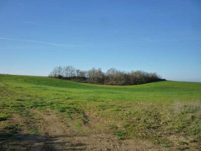 Terrain agricole, 20000 m² - Thezac (47370)