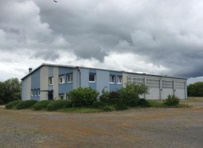 Vente Local d'activités / Entrepôt Drulingen