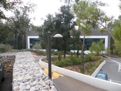 Location Bureau Sophia Antipolis
