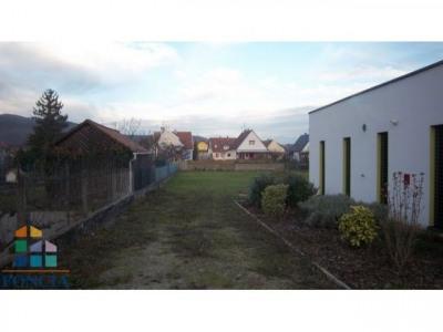 Vente Terrain Vieux-Thann