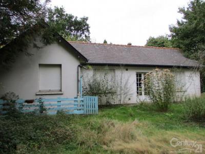 Vente maison / villa Saint-Domineuc