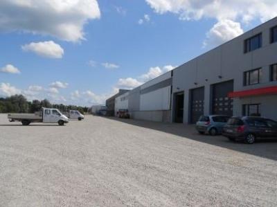 Location Local d'activités / Entrepôt Bouxwiller 0