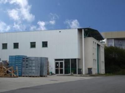 Vente Local d'activités / Entrepôt Verrières-le-Buisson 0