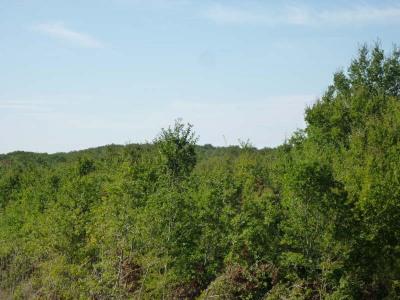 Parcelle de bois, 27600 m² - Gavaudun (47150)