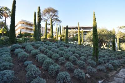 Vente de prestige appartement Cannes (06400)