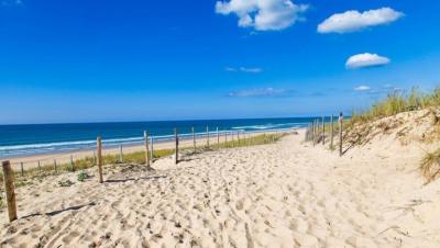 Vacation rental house / villa Lacanau-ocean 220€ - Picture 7
