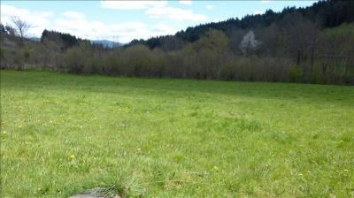 Vente terrain Champetieres