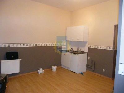 Appartement 1 chambre avec cour à Douai