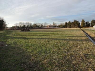 Terrain Agricole de 10132 m² bordé d'un ruisseau