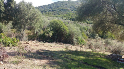 Beau terrrain sur la Rive-Sud d'Ajaccio à Pietrosella-Accelasca