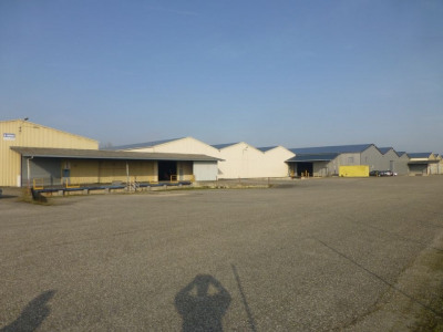 Location Local d'activités / Entrepôt Montauban