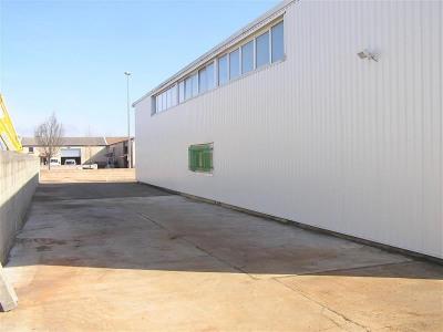 Location Local d'activités / Entrepôt Colomiers