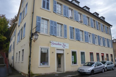 Location Local commercial Altkirch