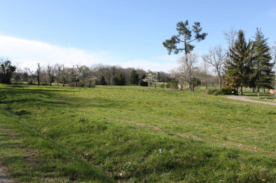 Terrain plat 2342 m²