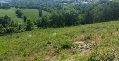 Vente terrain Balma Proximite