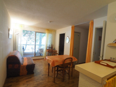 Appartement Le Grau Du Roi 2 pièce (s) 36 m²