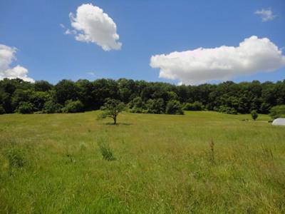 Terrain Aire Sur L Adour 1417 m²