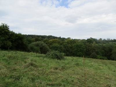 Vente terrain Proche pont l eveque 97 000€ - Photo 1