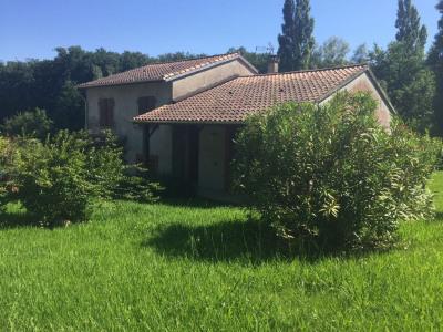 Maison T4 Saint-lys, parcelle 2600m²
