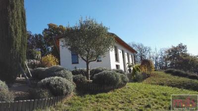 vente Maison / Villa Montrabe 10 mn