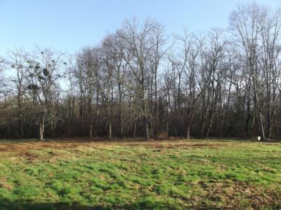 Terrain Arengosse 2460 m²