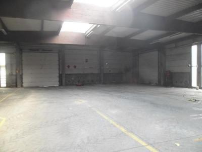 Location Local d'activités / Entrepôt Fretin