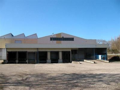 Location Local d'activités / Entrepôt Chessy