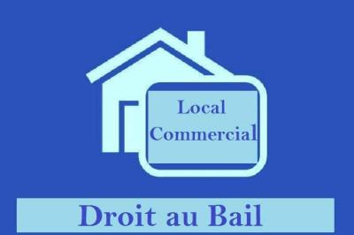 Fonds de commerce Commerces spécialisés Toulouse