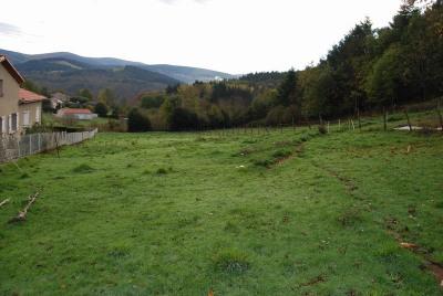 Vente terrain Mazamet (81200)