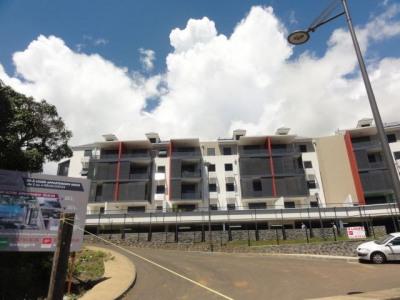 appartement Type T3 Duplex - Colline des Camélias
