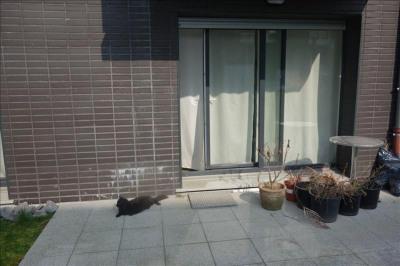 Vente de prestige appartement Lille (59800)
