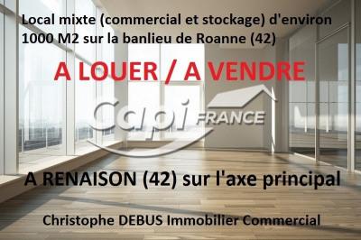 Vente Local commercial Renaison