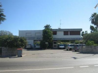 Location Local d'activités / Entrepôt Mandelieu-la-Napoule 0
