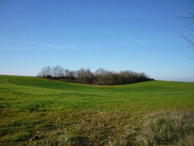 Terrain agricole Thezac