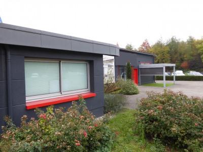 Location Local d'activités / Entrepôt Rouen