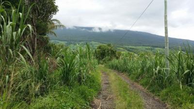 Grand terrain à vocation touristique