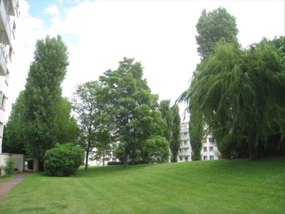 Appartement LA CELLE ST CLOUD - 4 pièce (s) - 80 m²