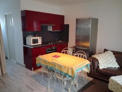 Appartement Le Grau Du Roi 2 pièce (s) 31 m²