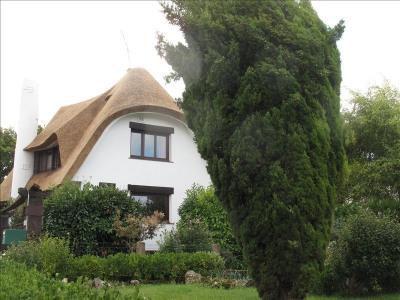 Maison style chaumière