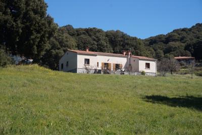 Magnifique propriété de 16 250 m² avec maison de type T4 de